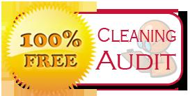 Best 1 Rochester Mi Carpet Amp Rug Cleaning 888 688 0603